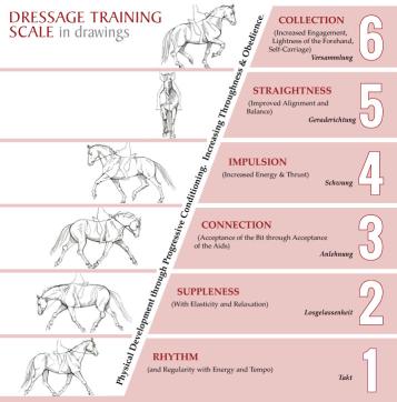 Training-Scale1 dressage