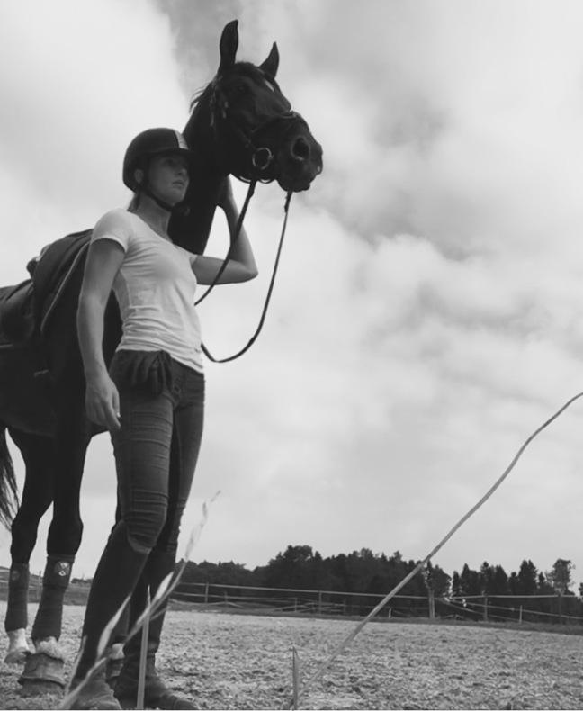horsenomics-sep